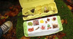 Knutselen-herfst-schatkist-boswandeling-van-eierdoos