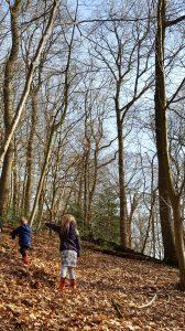 Met kinderen naar het bos